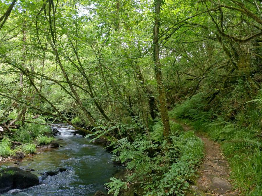 Ruta Río Mandeo